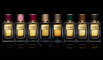 Dolce & Gabbana   Velvet Collection: Velvet Rose